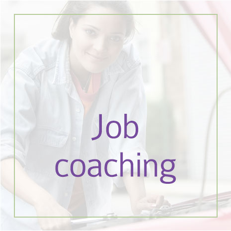 boxes-job-coaching